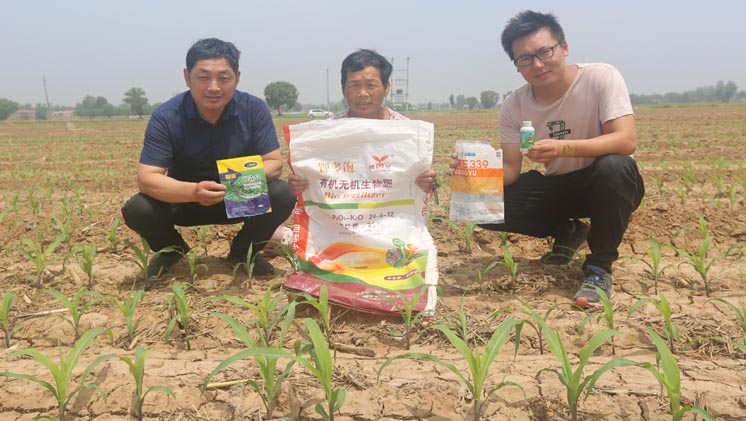 临漳程金花团队:我们一直在用钾多