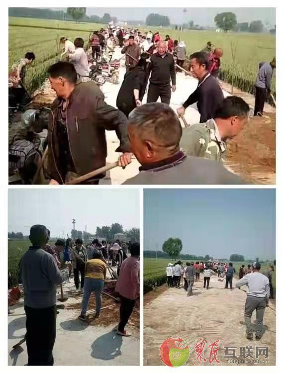 临漳砖寨营乡:雪中送炭解民忧 整